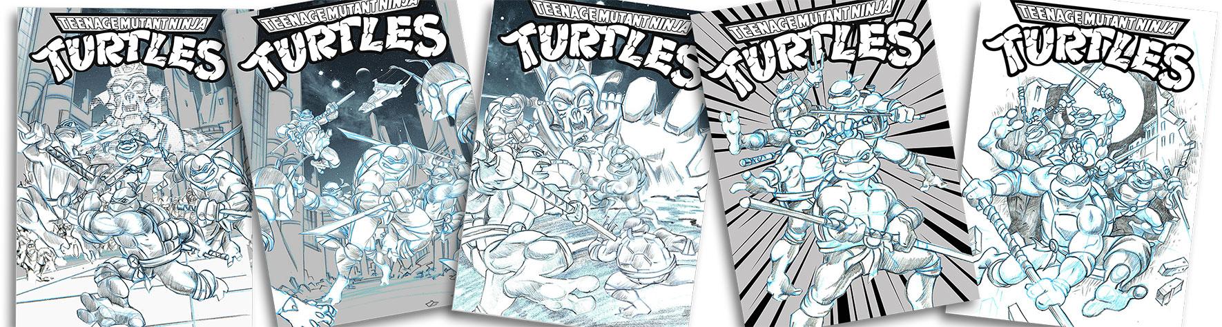 TMNT DVD Illustration  concept sketches