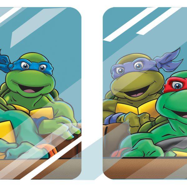 Closeup of Turtles in Van